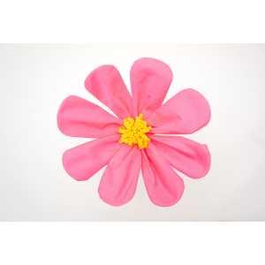 コスモス ピンク